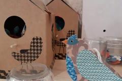 casette-uccellini-laboratorio-16-R-nel-bosco-2-e1528278112146
