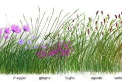 progettazione-Rnel-bosco-Reggio-Emilia-4