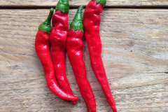 piccolo-seeds-5_cayenne_long_slim_1_820x