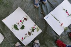 workshop-R-nel-bosco-Reggio-Emilia-2