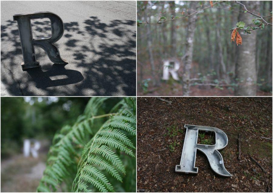 collage foto ilaria - R nel bosco - prove tecniche