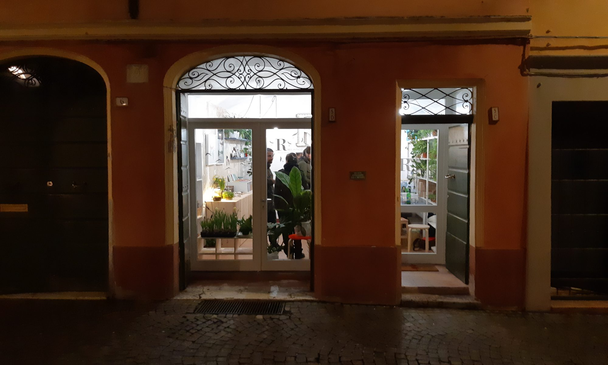 radici - R nel bosco - Reggio Emilia