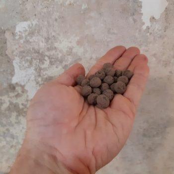 seedball - bombe di semi - R nel bosco