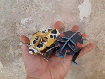 insetti - little wonders of nature - R nel bosco