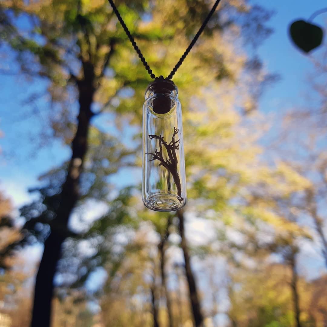 lichene sospeso - collana - R nel bosco