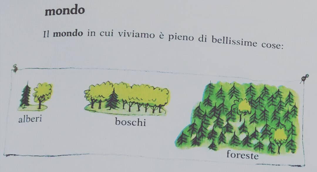 facebook R nel bosco - Reggio Emilia