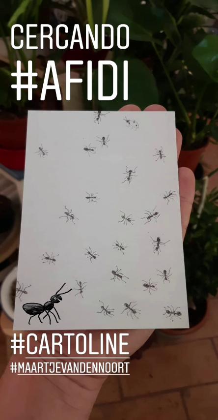wishlist luglio 2019 - R nel bosco - Reggio Emilia - cartoline insetti