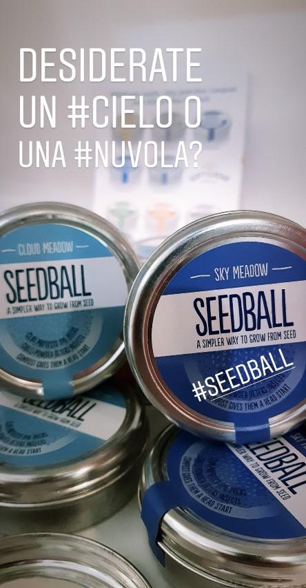 wishlist luglio 2019 - R nel bosco - Reggio Emilia- seedball