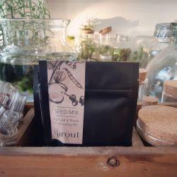 mix di semi misti - R nel bosco - Reggio Emilia