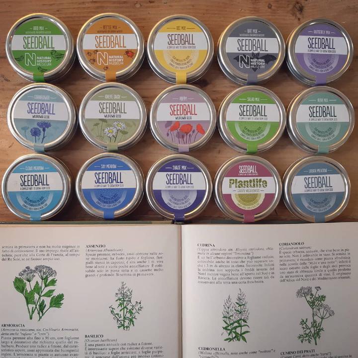 seedbombing - seedball - R nel bosco - bombe di semi