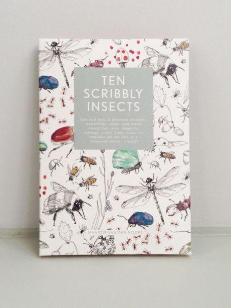 cartoline 10 scribbly insects - 10 insetti illustrati - R nel bosco