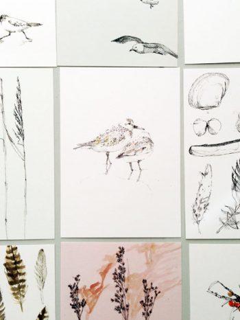 cartoline MARE - 10 cartoline a tema costiero - R nel bosco