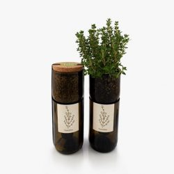 grow bottle - piante aromatiche indoor - R nel bosco