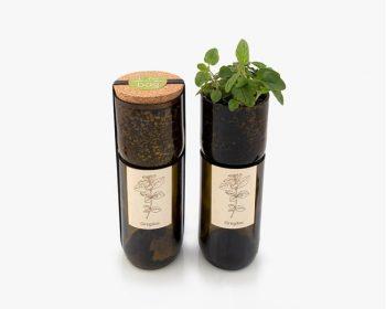 grow bottle - piante aromatiche indoor - R nel bosco