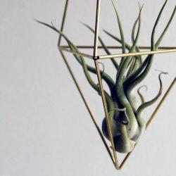 himmeli Delta small - DIY - geometrie da appendere - R nel bosco