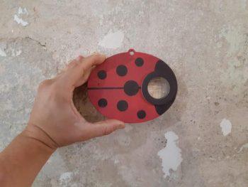 insect eye - lente di ingrandimento - R nel bosco - ladybird - coccinella