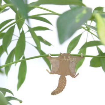 plant animal - R nel bosco - Flying Squirrel