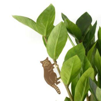 plant animal - R nel bosco - raccoon