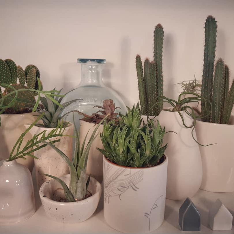 ceramica - categoria prodotto - negozio online - R nel bosco