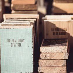 libro di legno - La vera storia di un albero - in cerca di utopia - R nel bosco