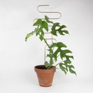 supporti per piante - squiggle - Golden plant stake - R nel bosco (10)